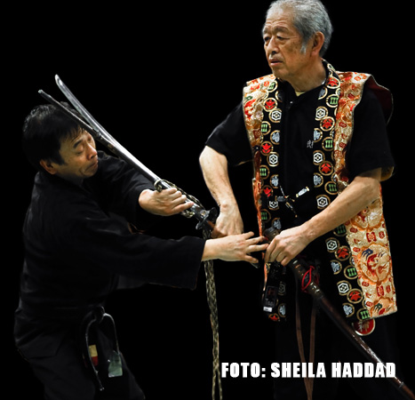 Hatsumi Sensei in action